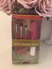 Sigma Mini Power Haul Pinsel Set Limitiert