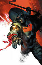 RED HOOD AND THE OUTLAWS #28 PUTRI VARIANT ED (14/11/2018)