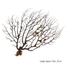 Sea Fan Sea Tree Aquarium Plants Fish Tank Decoration Sea Coral Ornament Black