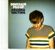 (DP422) Dinosaur Pile-Up, Arizona Waiting - 2013 DJ CD