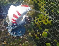 POND SPITTER KOI FISH GARDEN WATER FOUNTAIN FEATURE STATUE 1.5m HOSE NEW