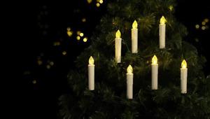 Sygonix SY-4531628 Weihnachtsbaum-Beleuchtung Innen batteriebetrieben Anzahl  f6