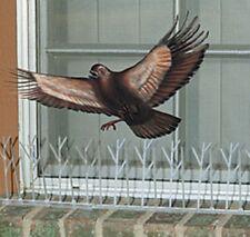 Bird-X 10' Stainless Steel Spikes Strip Kit Bird Pigeon Pest Repeller Repellent