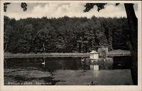 WALSRODE i. Hann. alte Postkarte Niedersachen AK um 1940 Partie Schwanen-Teich