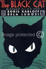 Vintage Bela Lugosi Horror Movie 11x17 Poster Black Cat