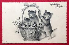 AK KATZE 1940 Katzen im Korb     ( 7547
