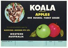 Koala Brand Vintage Tasmanian Apple Crate Label, Bear, *An Original Label*
