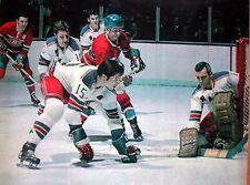 Nostalgia Hockey Print Photo Jim Neilson Ed Giacomin Goalie New York Ranger Eg14
