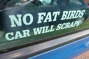 No fat birds car will scrape funny car window sticker reverse printed white