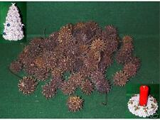 100+ Sweet Gum Seed Pods / Balls w/Stems for Nature Crafts