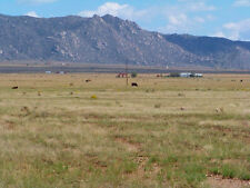 "SUPER RARE 10 ACRE NEW MEXICO RANCH ""TIERRA VALLEY""! CASH SALE! NO RESERVE!"