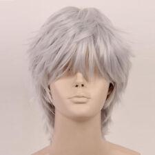 Adult Straight Short Wig Anime Gintama  kamui Sakata Gintoki Cosplay Man Wig