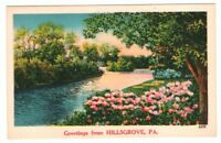 Undated Unused Postcard Greetings from Hillsgrove Pennsylvania PA Country Stream