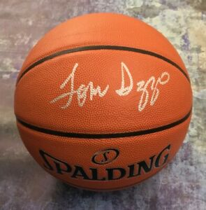 GFA Michigan State Spartans TOM IZZO Head Coach Signed Basketball T1 COA