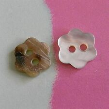 25 Akoya Pearl Flower Real Shell Craft Clothes Sew Scrapbooking Button 10mm D196