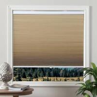 Grandekor 31X64 Cellular Shades Cordless Blackout Blinds Window Fabric Shad. R