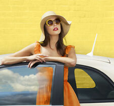 Brand New ORIGINALE FIAT 500 colore terapia BIANCO Antenna Mast / Antenna 51932472