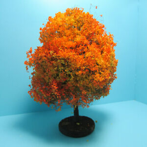 """Dollhouse Miniature Beautiful Outdoor 6"""" Autumn Tree for Landscaping CABHS23"""