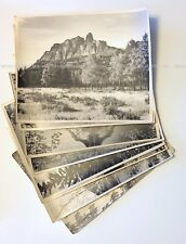 8 Vintage Photographs, Canadian Rockies, Rundle, Castle, Robson, Large Prints