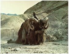 Star Wars Original 8x10 Lobby Carte 1977 Tuskan Raider Sur Bantha