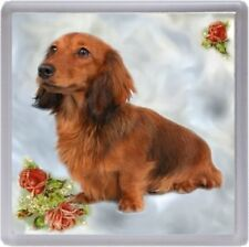Dachshund (Longhaired) Coaster No 1 by Starprint - Auto combined postage