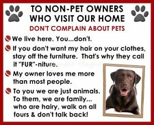 CHOCOLATE LAB House Rules for Non Pet Owners Funny Fridge Magnet