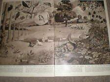 Animals that assist seed distribution Neave Parker 1955 prints ref Z