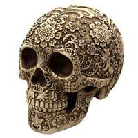 Résine Humain Crâne de Tête Replica Modèle Squelette Maison Bureau Décor Cadeau