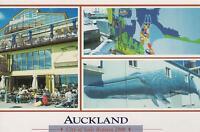 AUCKLAND NEW ZEALAND POSTCARD -CITY of SAILS REGATTA 2000 NZ PC