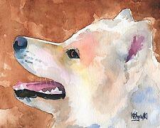 Samoyed Dog 11x14 signed art PRINT RJK painting
