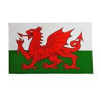 2 X LARGE WALES WELSH FLAG THICK HEMMED COTTON ABSORBANT TEA TOWELS 45 X 75CM