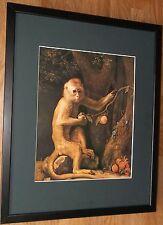 SCIMMIA VERDE di George Stubbs, 20''x16'' telaio, Scimmia Wall Art
