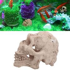 Aquarium Human Skull Ornament Underwater Cave Fish Tank Landscape Decoration