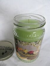 """NEW  Home & Garden Party """"Kiwi Pear"""" 10 oz Jar Candle MADE IN USA 50 Hr Burn Tim"""