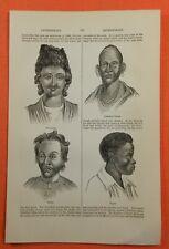 Anthropologie Anthropology Menschenkunde Evolution Holzstich 1880
