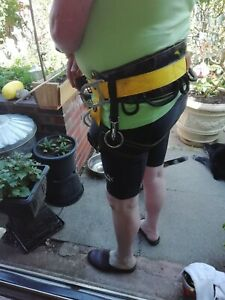 Arborists climbing belt