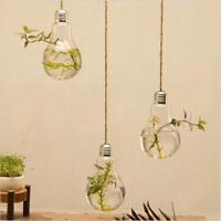 Wand hängen Glas Blume Pflanze Vase Terrarium Container Hausgarten Ball Dekor KS