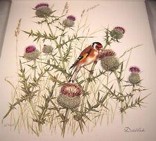 Distelfink Fine Art Bird Print Water color G Koch 1978 12x13 European Goldfinch
