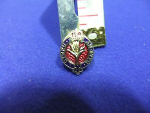 pin badge military welsh guards regiment armed services remembrance sweetheart