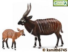 CollectA BONGO & CALF solid plastic toy wild zoo animal African antelope  NEW 💥