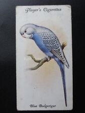 No.21 BLUE BUDGERIGAR - Aviary and Cage Birds by John Player 1933