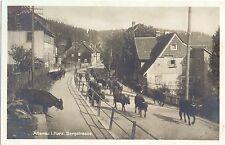 Altenau im Harz, Bergstrasse, Kuh, Kühe, 30er Jahre