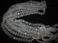 """8"""" Natural Fire Play RAINBOW MOONSTONE Faceted Rondelle GEMSTONE BEADS Strand"""