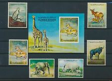 LN36540 Ajman animals fauna flora wildlife fine lot MNH