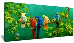 Chirpy Tropical Parrots HD Framed Canvas Wall Art Picture Print