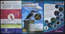 Malaysia 25 Sen Coin, 2004 Endangered Species Collared Kingfisher Bird in Folder