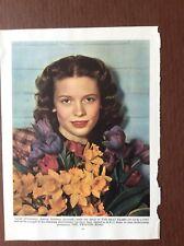 K1h Ephemera Book Plate Film Star Cathy O Donnell