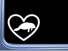 Manatee Big Heart L361 6 inch Decal Sticker
