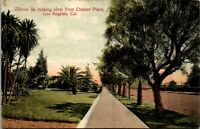 Vtg 1910's Adams Street View, Chester Place, Los Angeles California CA Postcard