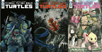 TMNT Ongoing #101 First Print - Variant - 1:10 IDW Teenage Mutant Ninja Turtles